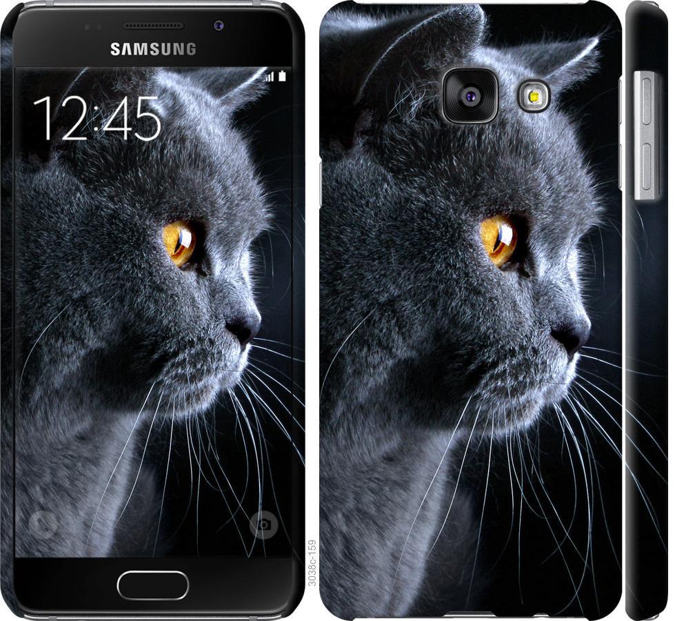 Чехол на Samsung Galaxy A3 (2016) A310F Красивый кот