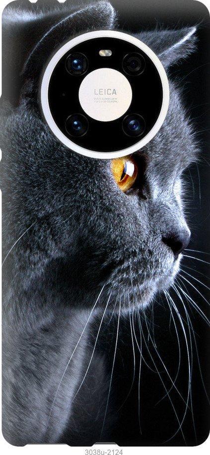 Чехол на Huawei Mate 40 Pro Красивый кот