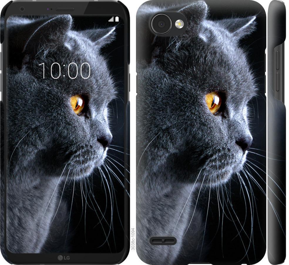 Чехол на LG Q6 Красивый кот