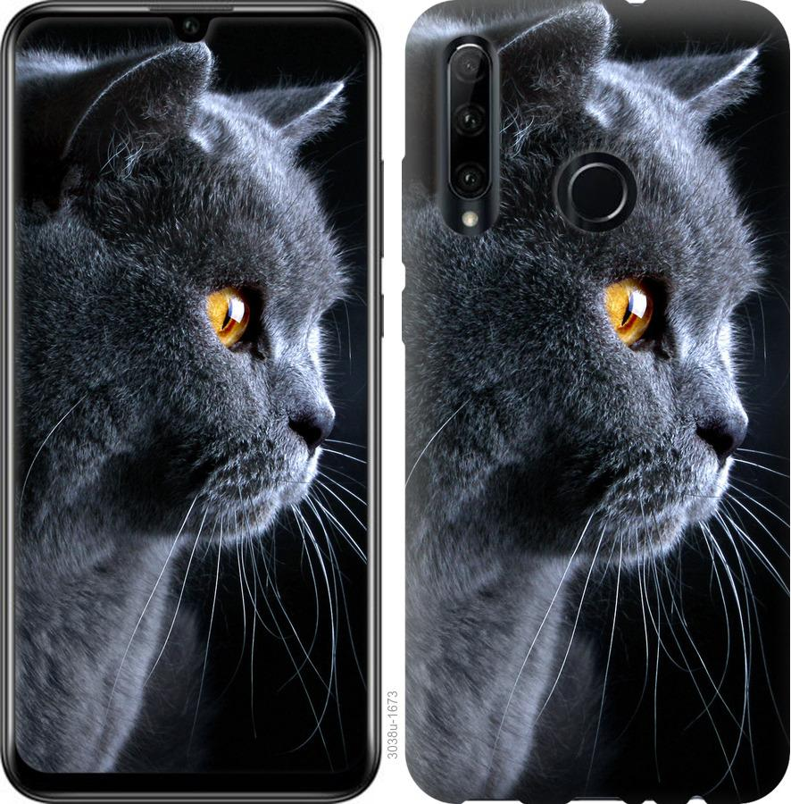 Чехол на Huawei P40 Lite E Красивый кот
