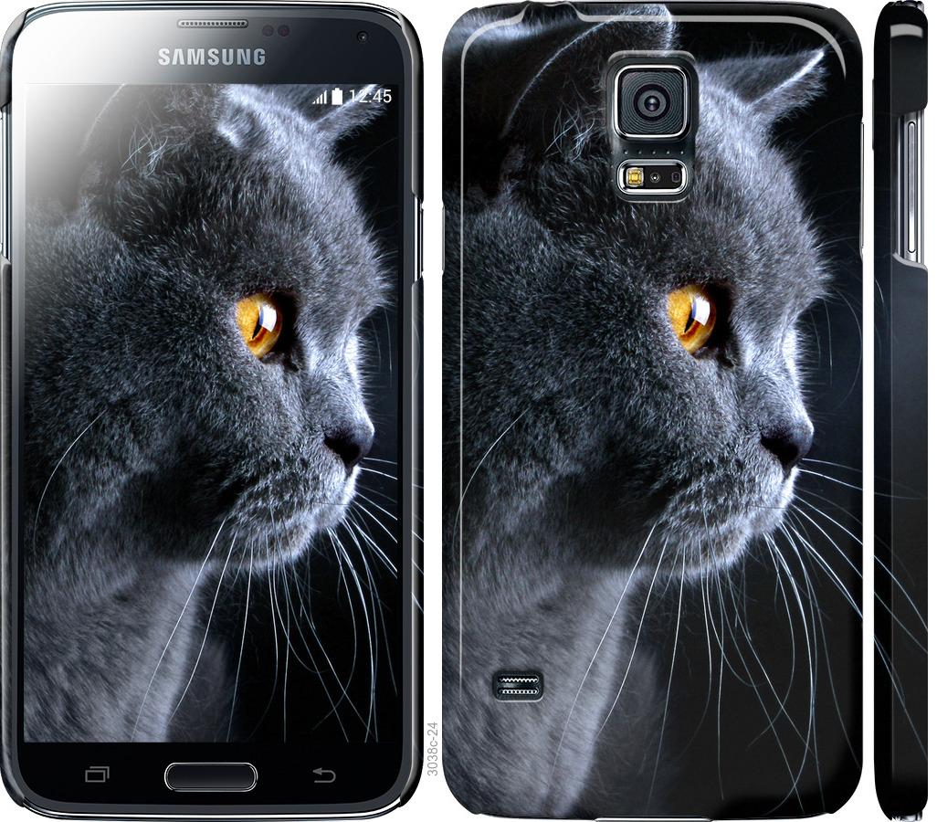 Чехол на Samsung Galaxy S5 g900h Красивый кот