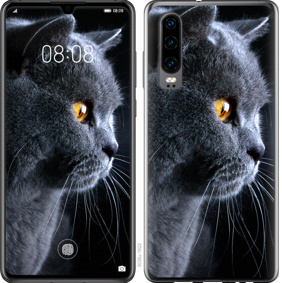 Чехол на Oppo Find X2 Красивый кот