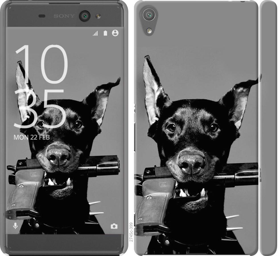 Чехол на Sony Xperia XA F3112 Доберман