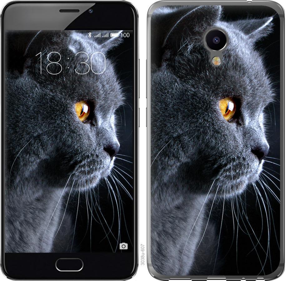 Чехол на Meizu M3e Красивый кот