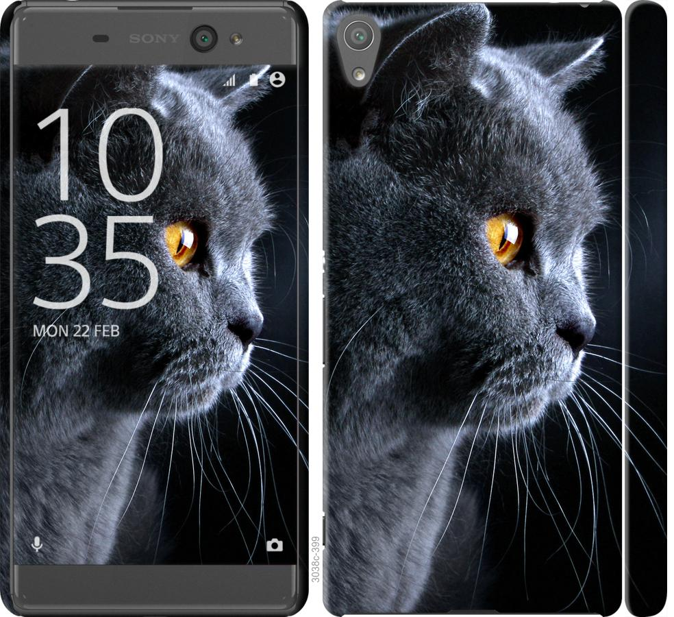 Чехол на Sony Xperia XA F3112 Красивый кот