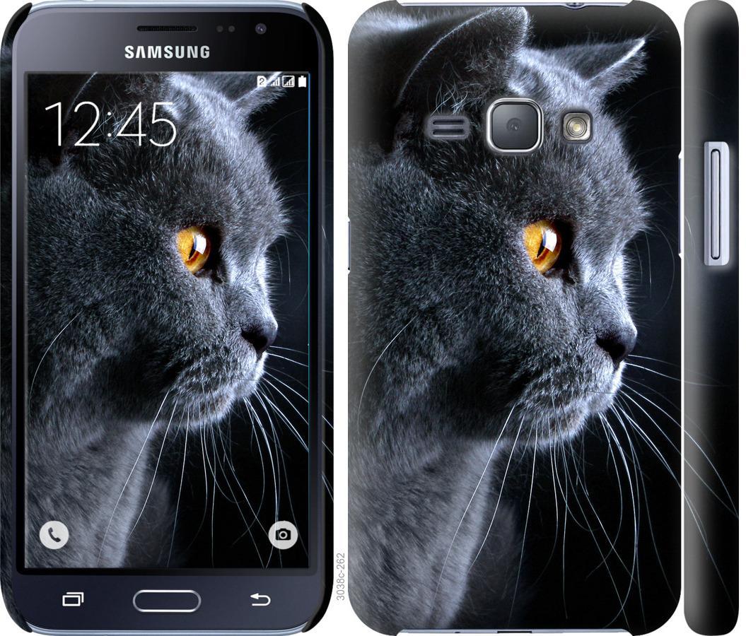 Чехол на Samsung Galaxy J1 (2016) Duos J120H Красивый кот