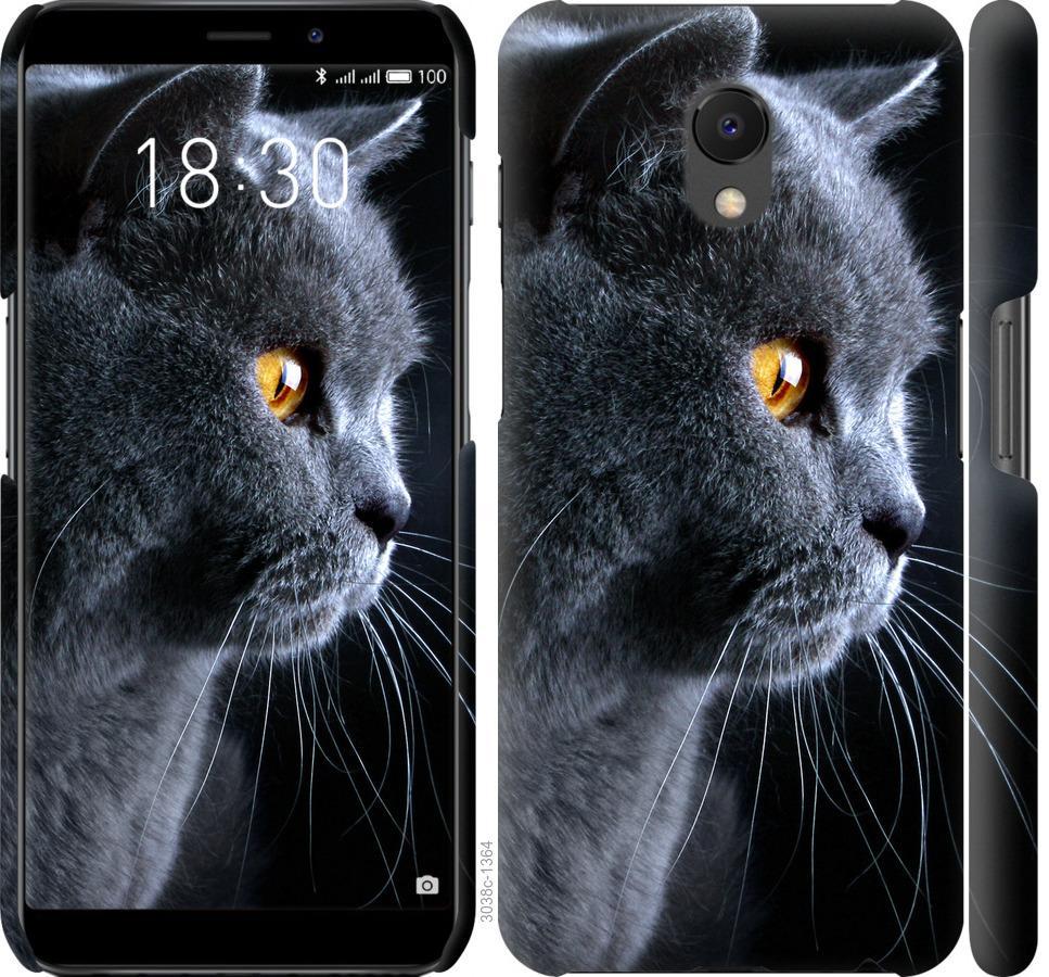 Чехол на Meizu M6s Красивый кот