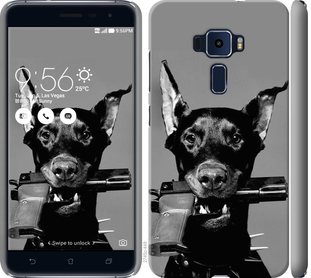 Чехол на Asus Zenfone 3 ZE520KL Доберман