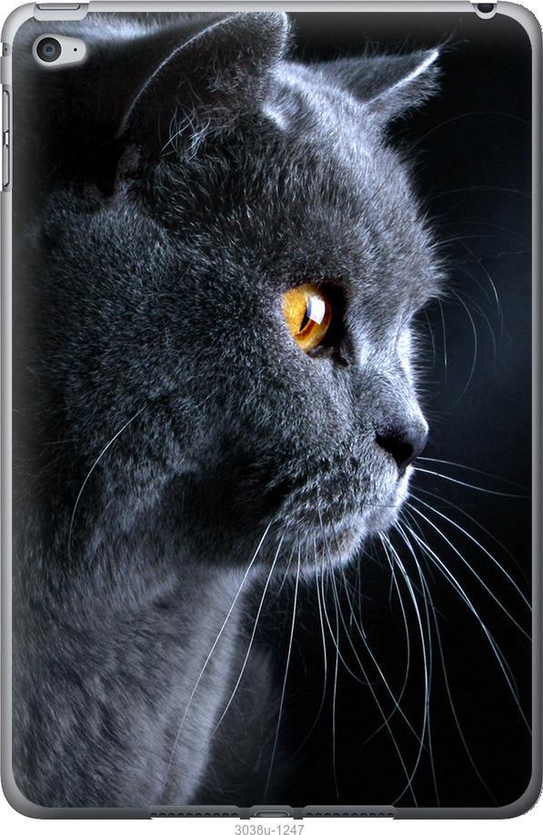 Чехол на iPad mini 4 Красивый кот
