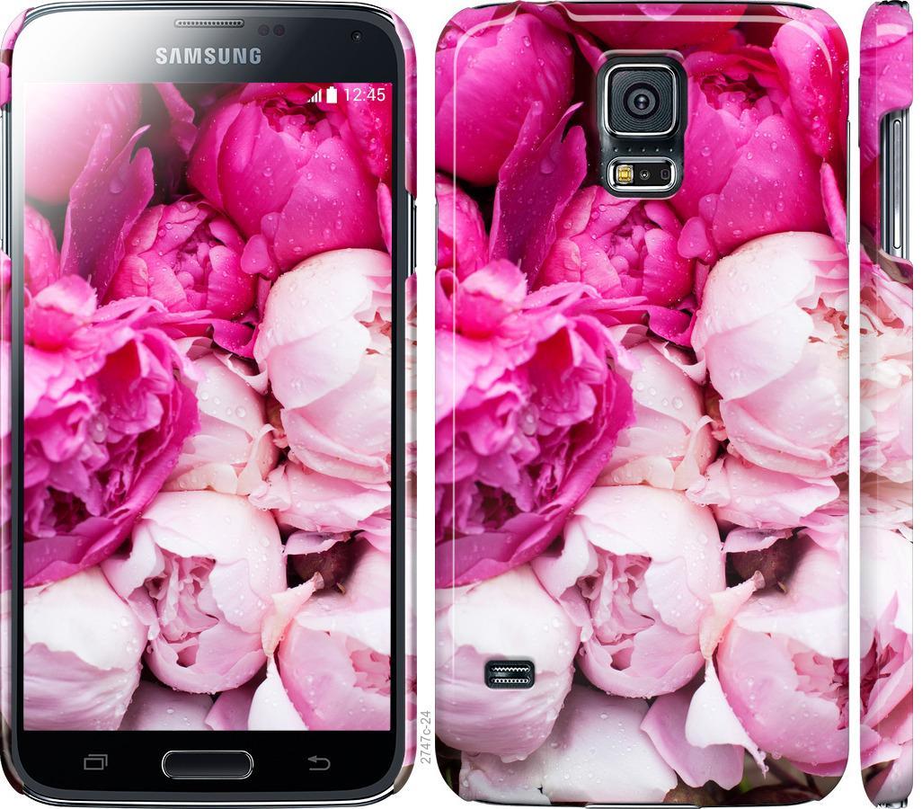 Чохол на Samsung Galaxy S5 g900h Рожеві півонії