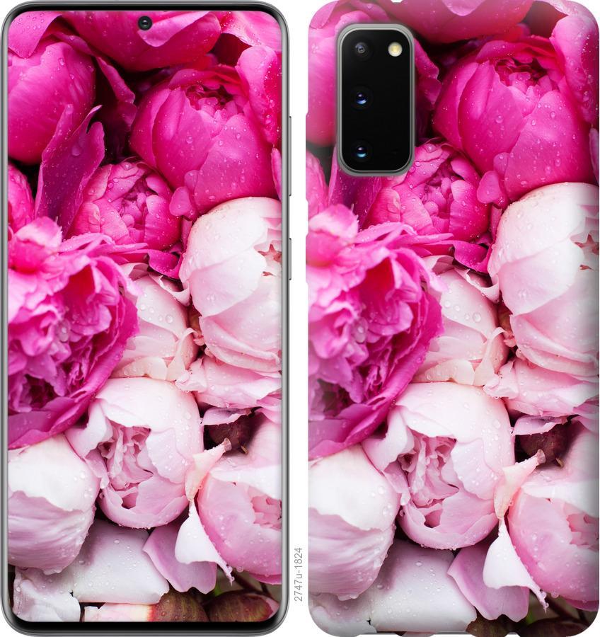 Чехол на Huawei Honor 30 Розовые пионы