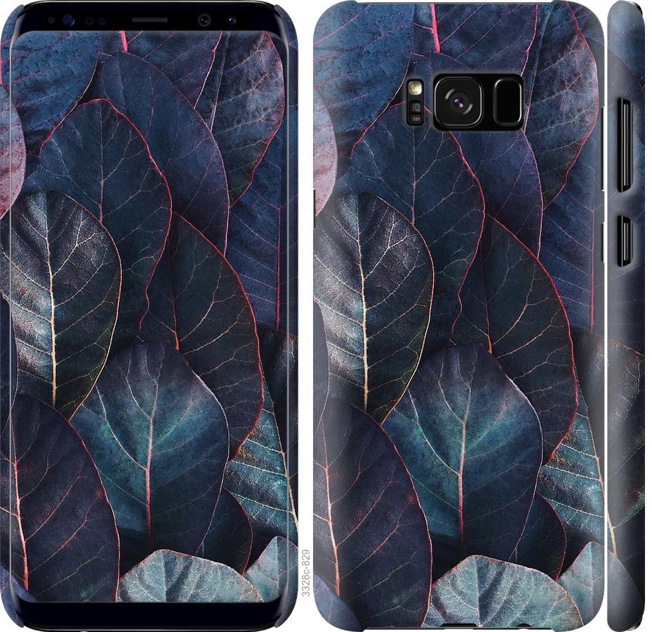 Чехол на Samsung Galaxy S8 Листья v3