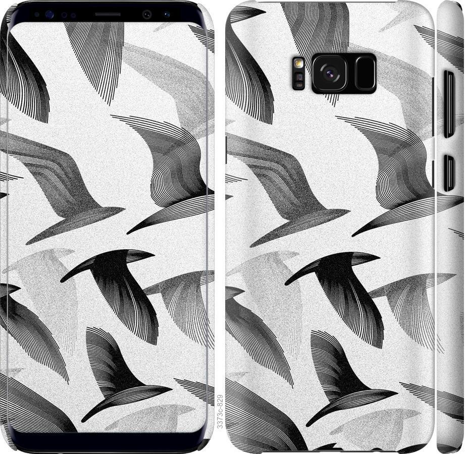 Чехол на Samsung Galaxy S8 Птицы 2