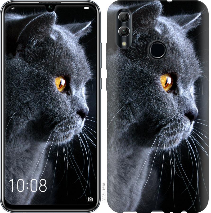 Чехол на Realme 3 Pro Красивый кот