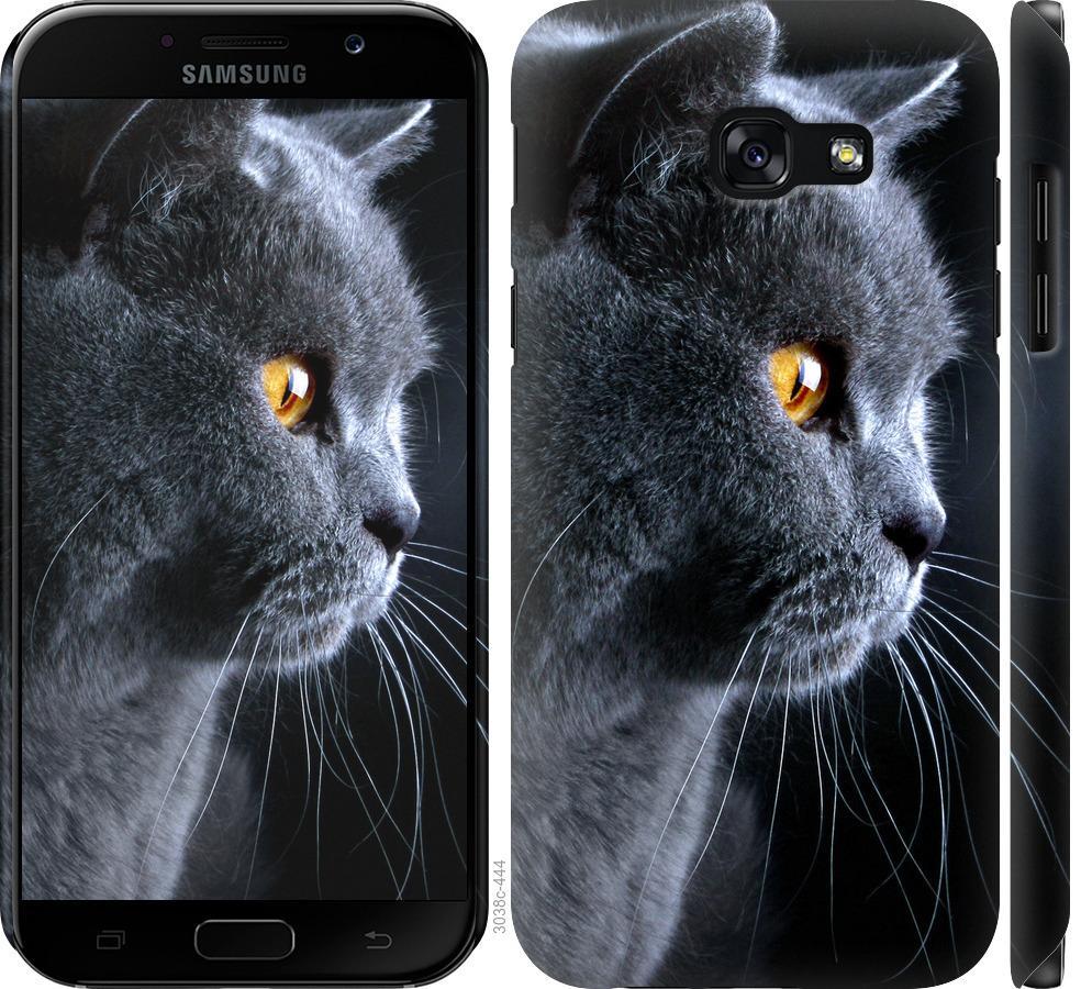 Чохол на Samsung Galaxy A5 (2017) Гарний кіт
