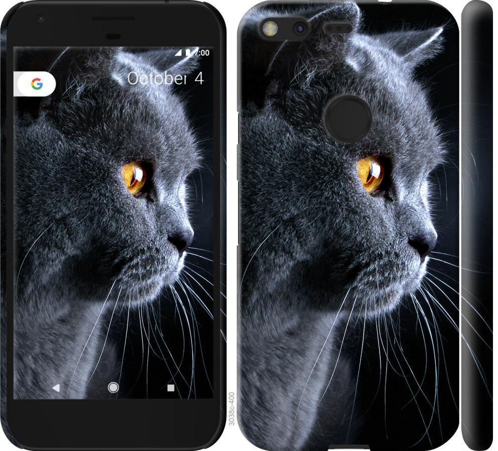 Чехол на Google Pixel Красивый кот