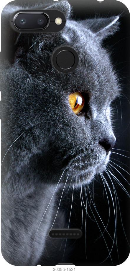 Чехол на Oppo A5S Красивый кот