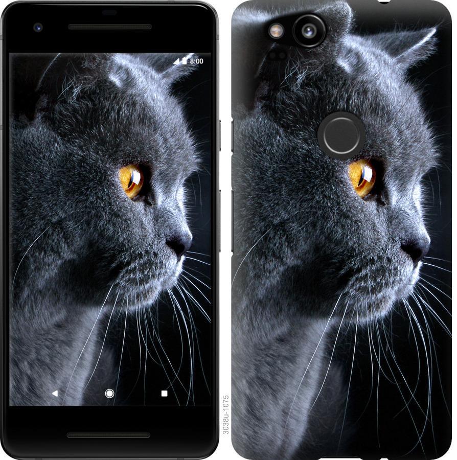 Чехол на Google Pixel 2 Красивый кот