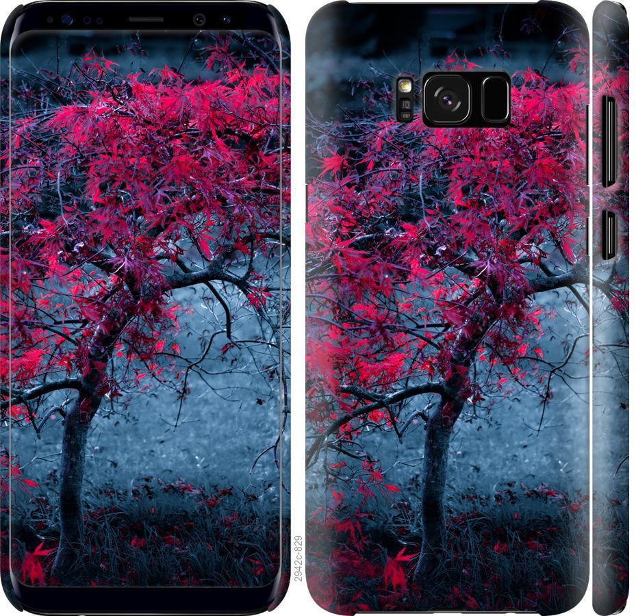 Чехол на Samsung Galaxy S8 Дерево с яркими листьями