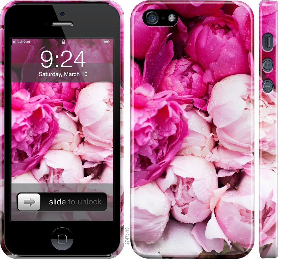 Чохол на iPhone SE Рожеві півонії