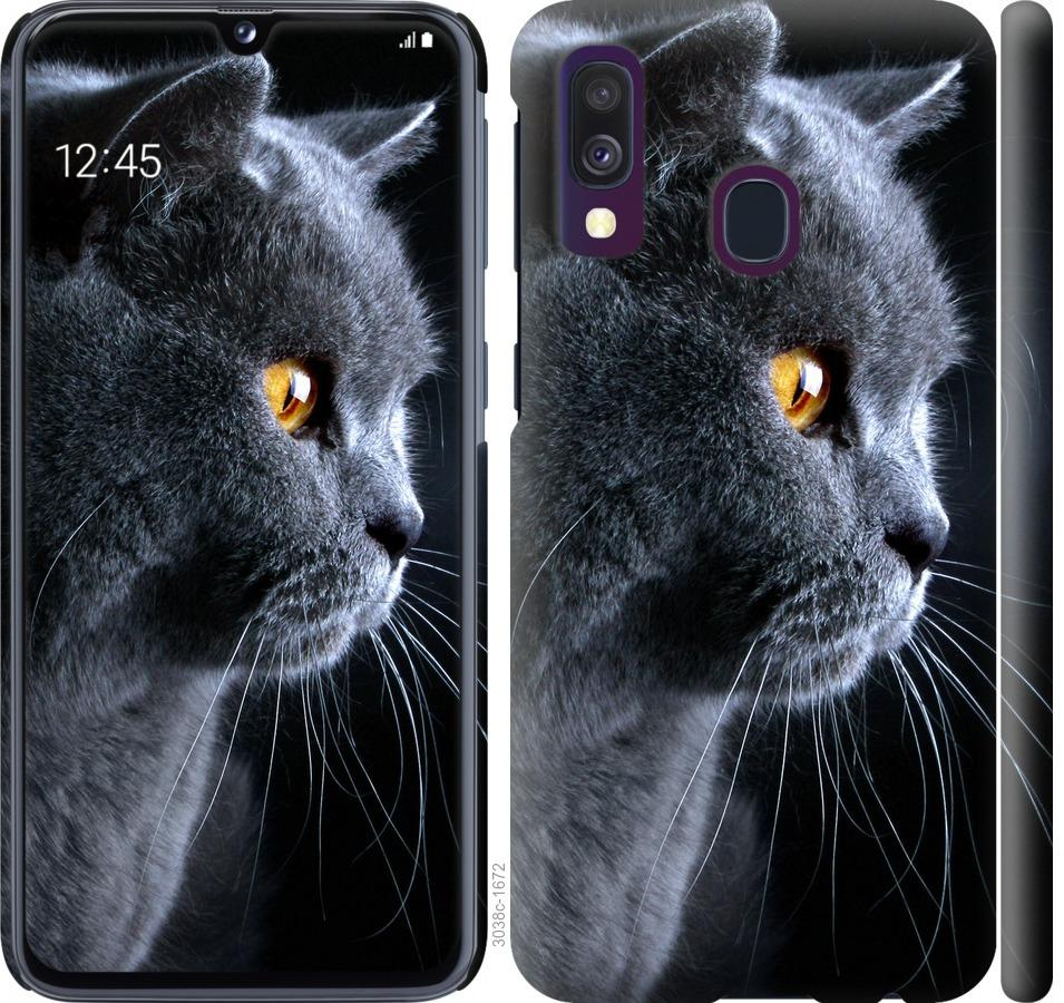 Чехол на Samsung Galaxy A40 2019 A405F Красивый кот