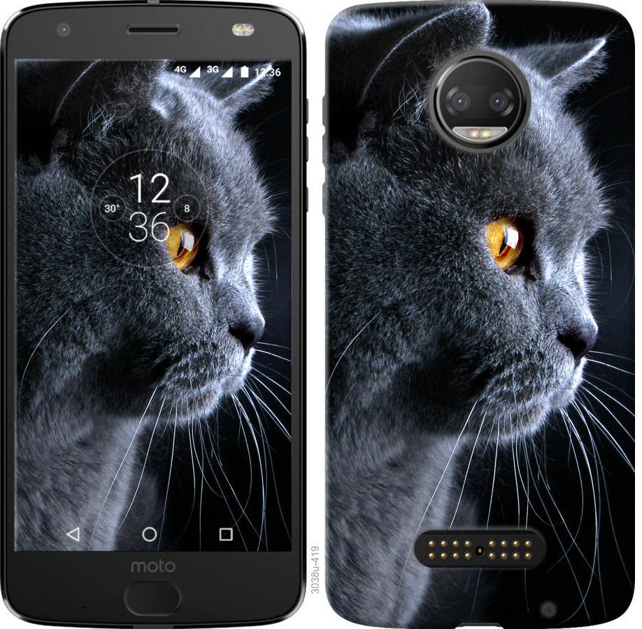 Чохол на Motorola Moto G5 PLUS Гарний кіт