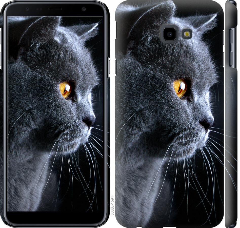 Чехол на Samsung Galaxy J4 Plus 2018 Красивый кот
