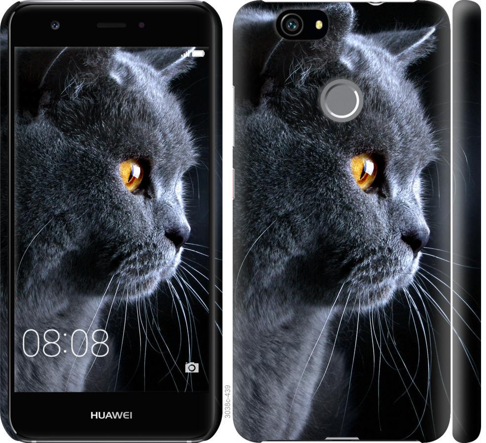 Чехол на Huawei Nova Красивый кот