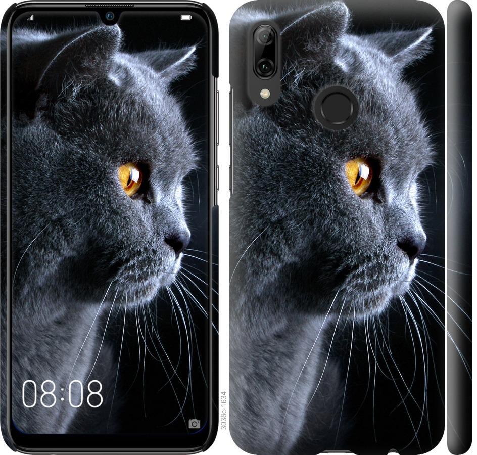 Чехол на Huawei P Smart 2019 Красивый кот