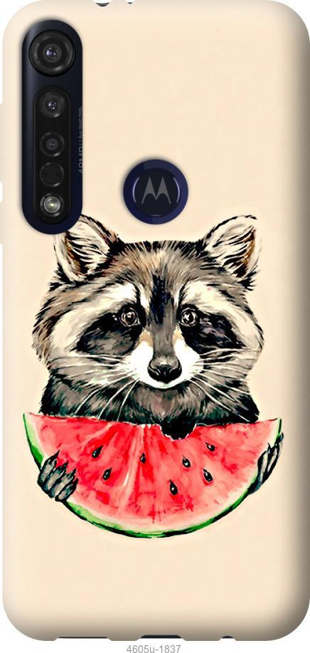 Чехол на Motorola G8 Plus Енотик с арбузом