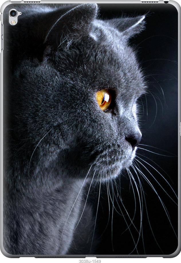 Чехол на iPad Pro 12.9 Красивый кот