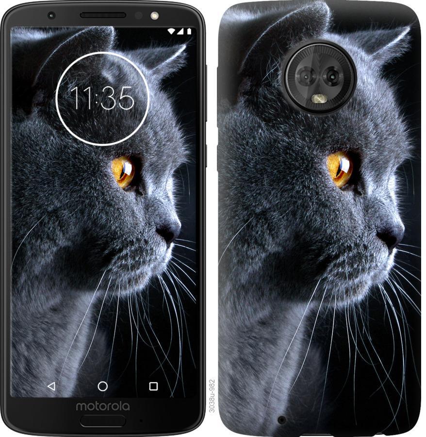 Чохол на Motorola Moto G6 Гарний кіт