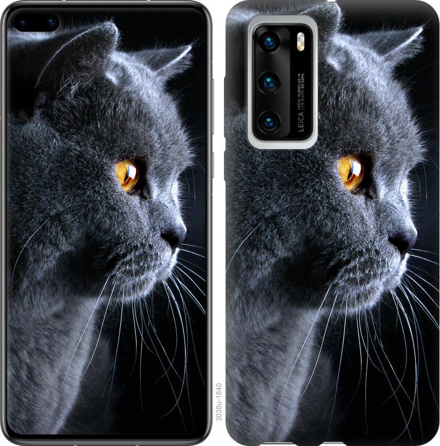 Чехол на Huawei P40 Красивый кот