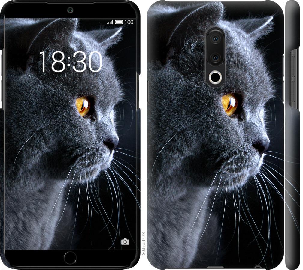 Чехол на Meizu 15 Plus Красивый кот
