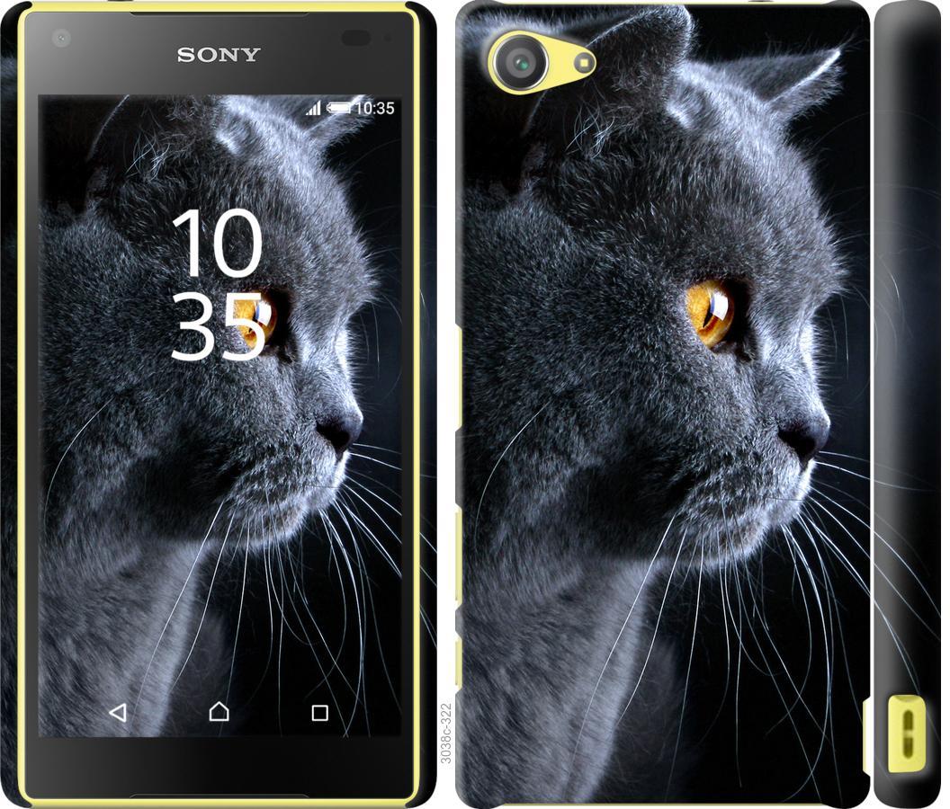 Чехол на Sony Xperia Z5 Compact E5823 Красивый кот