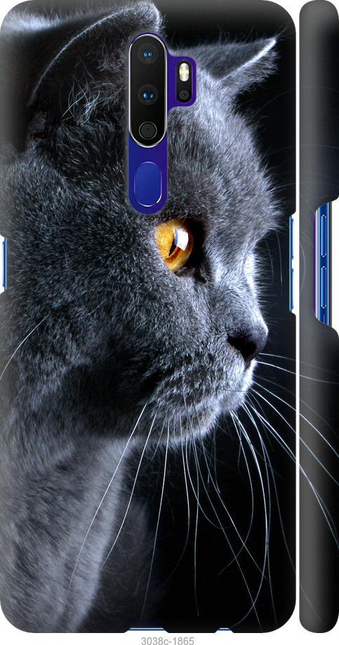 Чехол на Oppo A5 2020 Красивый кот