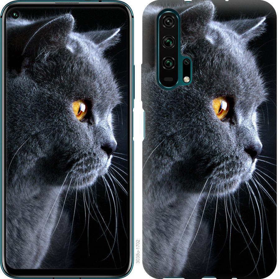 Чехол на Huawei Honor 20 Pro Красивый кот