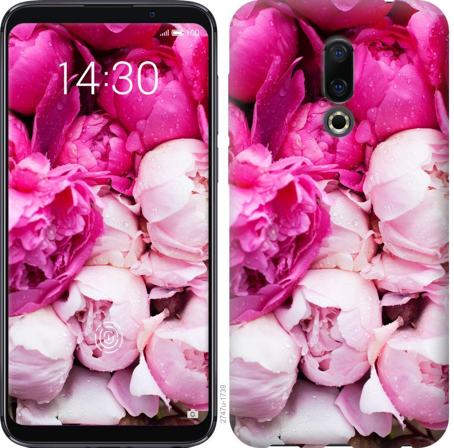 Чехол на Meizu 16 Розовые пионы