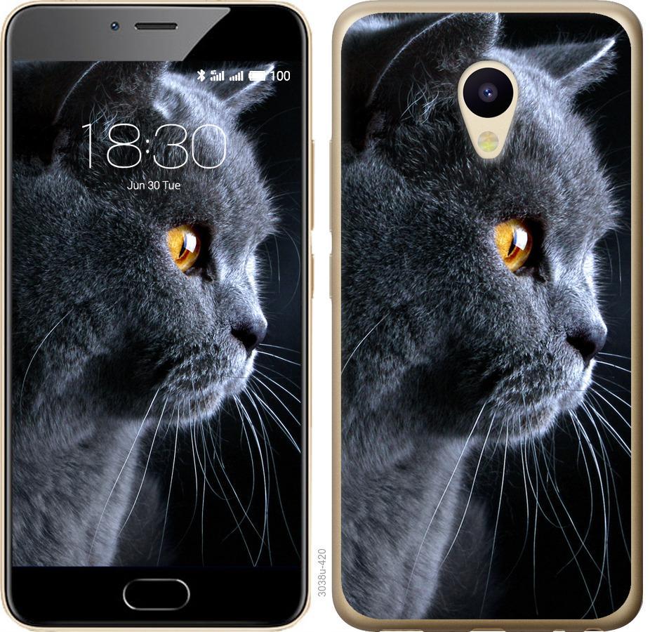 Чехол на Meizu M5 Красивый кот