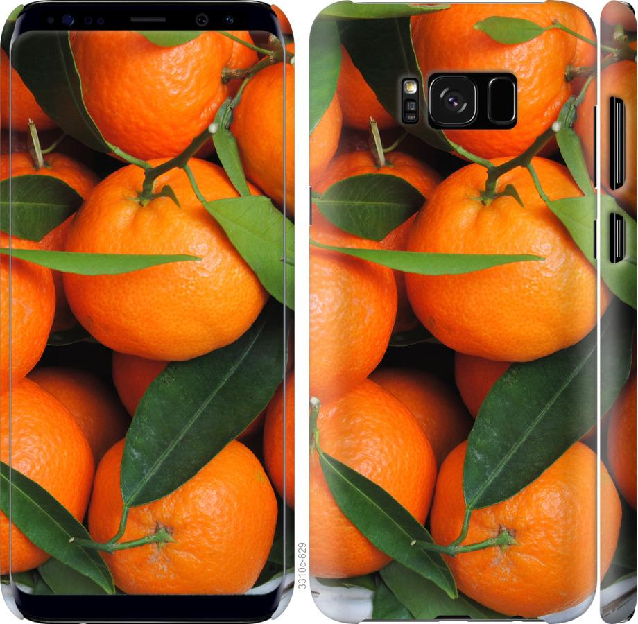 Чехол на Samsung Galaxy S8 Мандарины