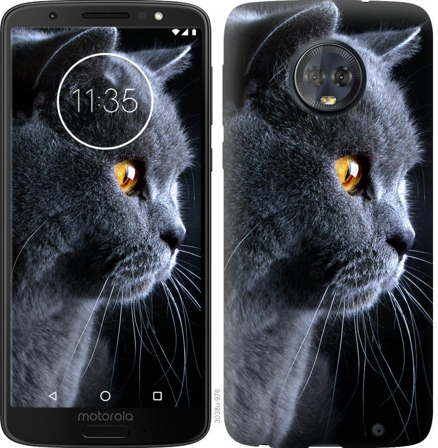 Чехол на Motorola Moto G6 Plus Красивый кот