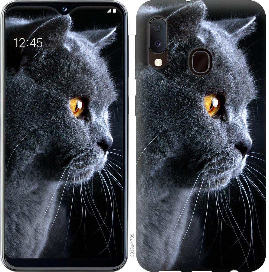 Чохол на Samsung Galaxy A20e A202F Гарний кіт