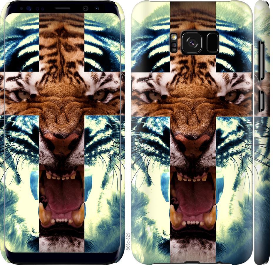 Чехол на Samsung Galaxy S8 Злой тигр