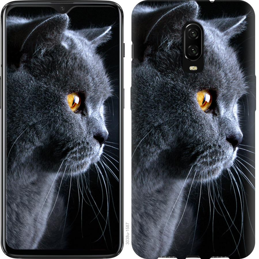 Чехол на OnePlus 6T Красивый кот