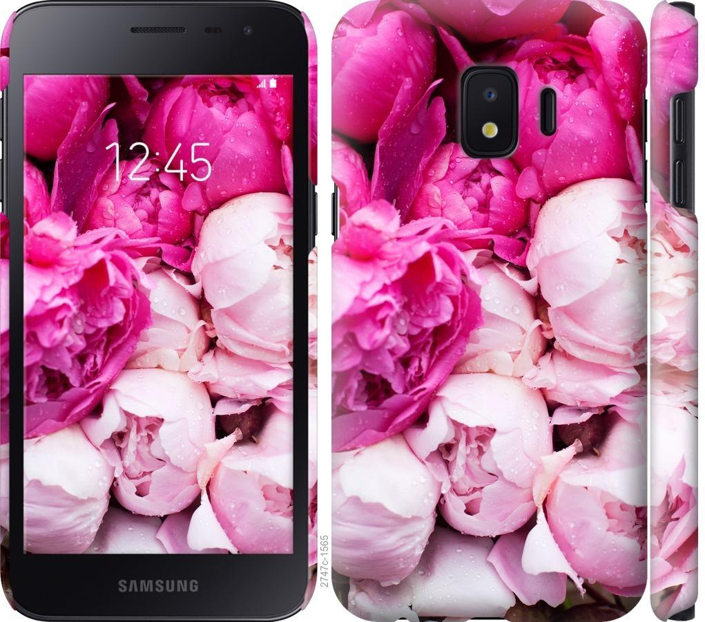 Чехол на Samsung Galaxy J2 Core Розовые пионы