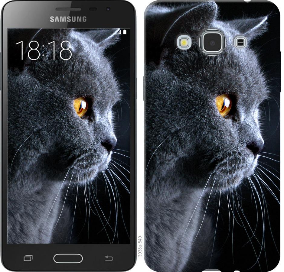 Чехол на Samsung Galaxy J3 Pro Красивый кот