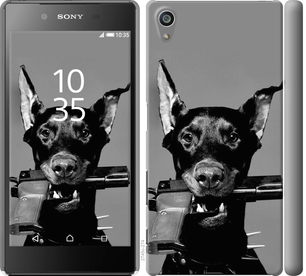 Чехол на Sony Xperia Z5 E6633 Доберман