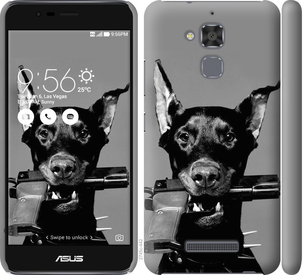 Чохол на Asus Zenfone 3 Max ZC520TL Доберман