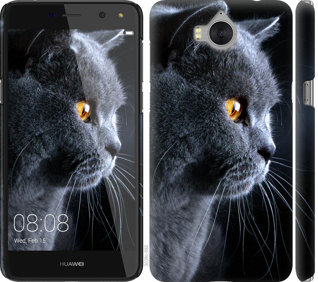 Чехол на Huawei Y5 2017 Красивый кот