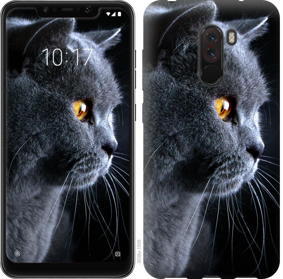 Чехол на Realme X2 Pro Красивый кот